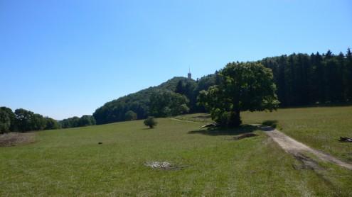 Blick vom Ropfeld auf den Roßberg